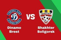 Coppa di Bielorussia: Brest-Soligorsk: quote e pronostico(08/04/2020)