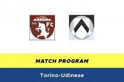 Serie A, Torino-Udinese: quote, probabili formazioni e pronostico (23/06/2020)